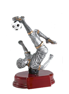 small soccer trophy